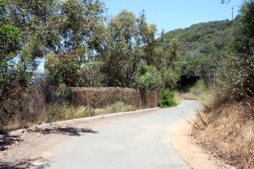 Road Leading to Pacific Palisades Stairs